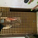 grp riser flooring lev alfredpl