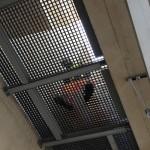 grp service riser balfour beatty waterloo